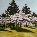 High Park Blossoms 2 12x12b